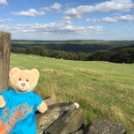 Playgroup bear at top of Sir William Hill